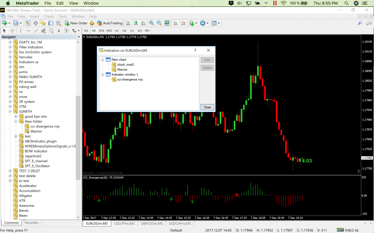 Binary options warrior forum